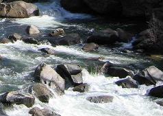 medium_riviere.jpg